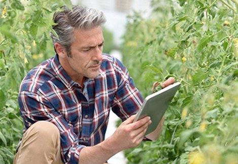 Όρια στα έξοδα αγροτών που περνούν στα λογιστικά βιβλία φέρνει το νέο Ε3